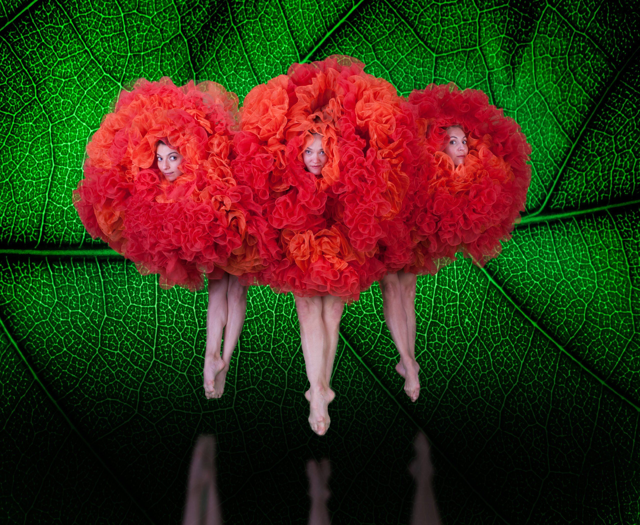 Viva Momix @ Charleston Gaillard Center